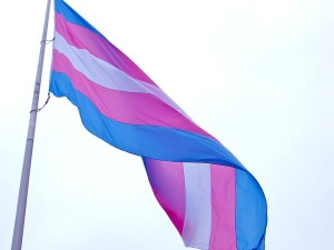 Trans flag by Wikimedia User LongLiveRock - licensed under Creative Commons