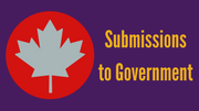 Submissions to government